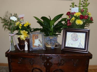 Gifts of flowers for baby Terefech (January, 2011)