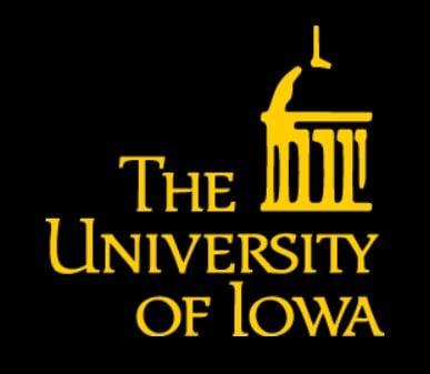 Courtesy: https://brand.uiowa.edu/university-logo