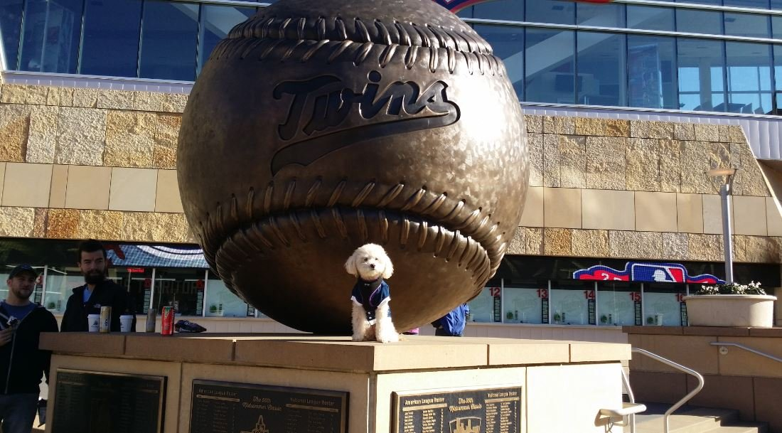 People and even dogs flock to Target Field for Twins home opener