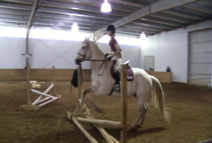 Equestrian legend comes to rochester to teach next for Champion motors waterloo iowa